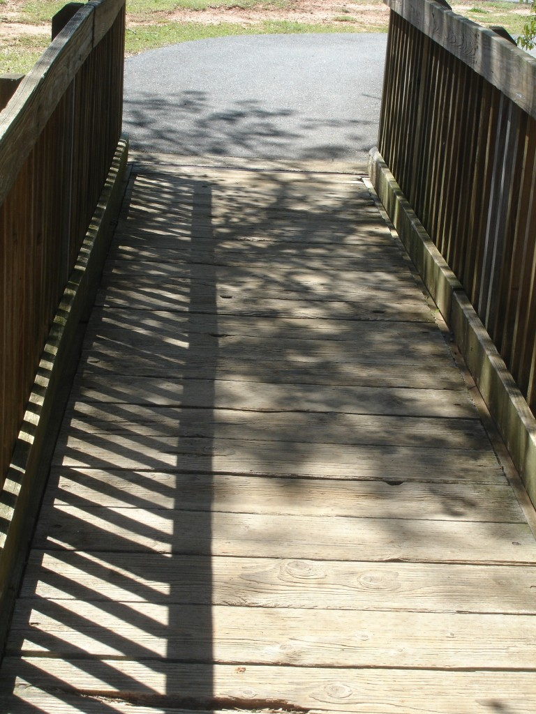 Trail Bridge 1