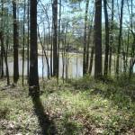 BethesdaPark_Trail