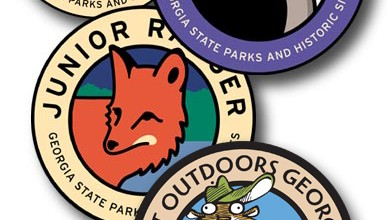 juniorranger_stateparkpatches