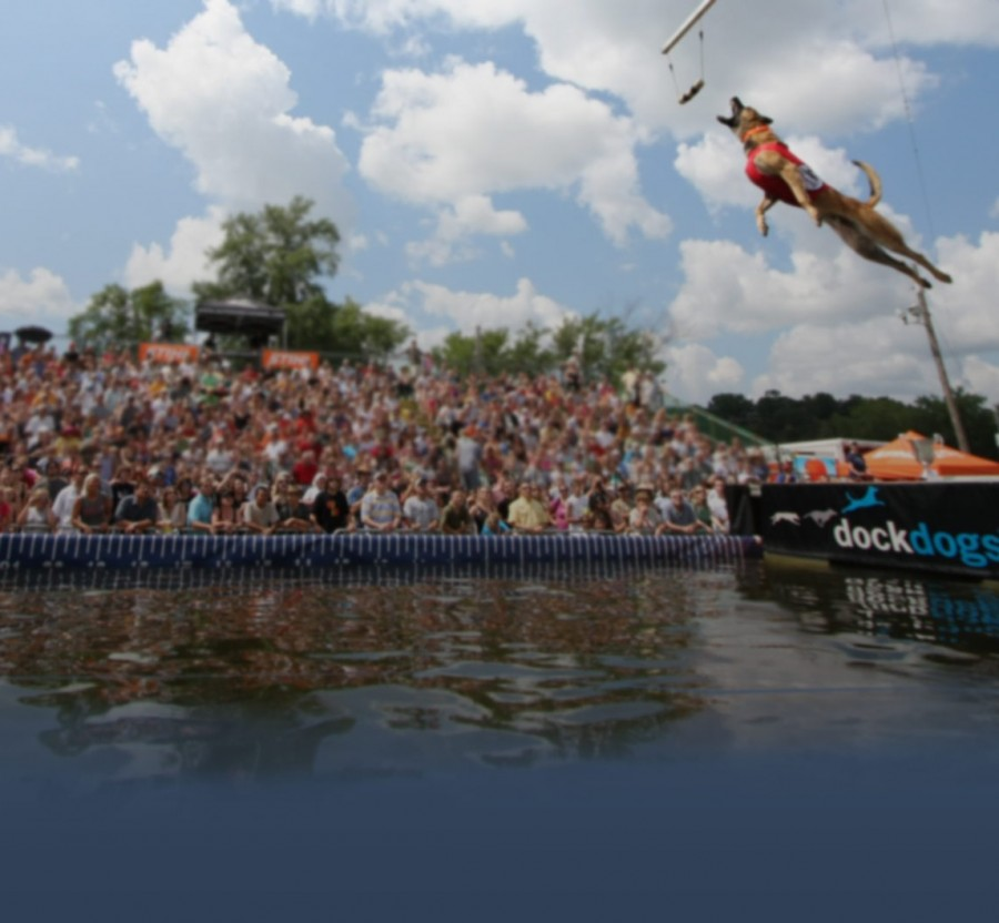 DockDogs at Stone Mountain