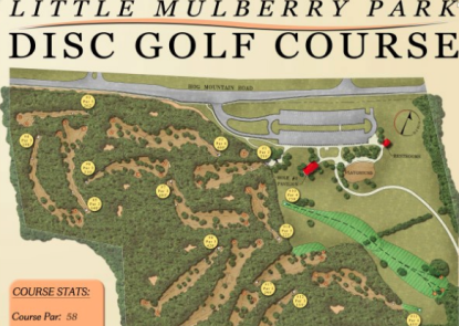 Little Mulberry Park Disc Golf